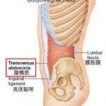 自宅でできる姿勢改善体操 | バランスボールを使った体幹の意識作り
